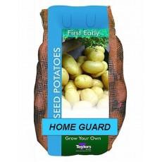 Taylors Home Guard Seed Potatoes 2kg